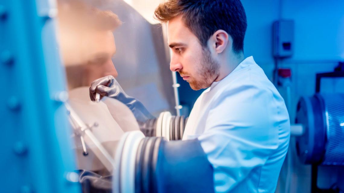 Candidaturas ao Doutoramento em Bioengenharia