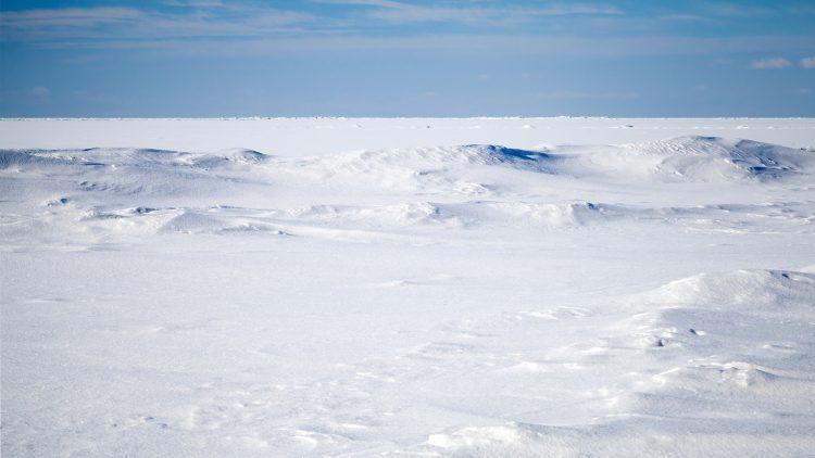 Investigador do Técnico lidera projeto internacional no Ártico – T-MOSAiC