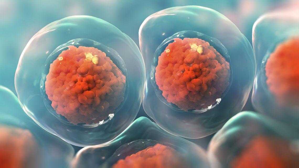Simulação de células ao microscópio.
