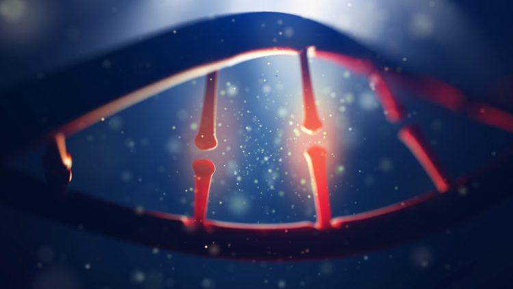 Simulação 3D de ácido desoxirribonucleico.