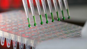 Aparelho de eletroforese num laboratório de Engenharia Bioquímica