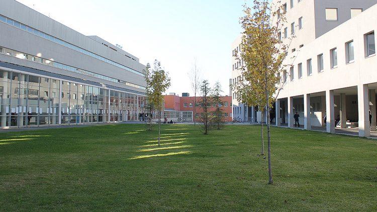 CCS 2019 – 1.ª Conferência Campus Sustentável: IES como Agentes de Mudança