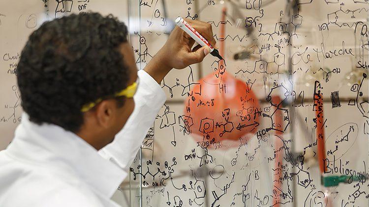 Conferência de Natal'19: Quando a Ciência se torna uma Arte – Nuno Maulide