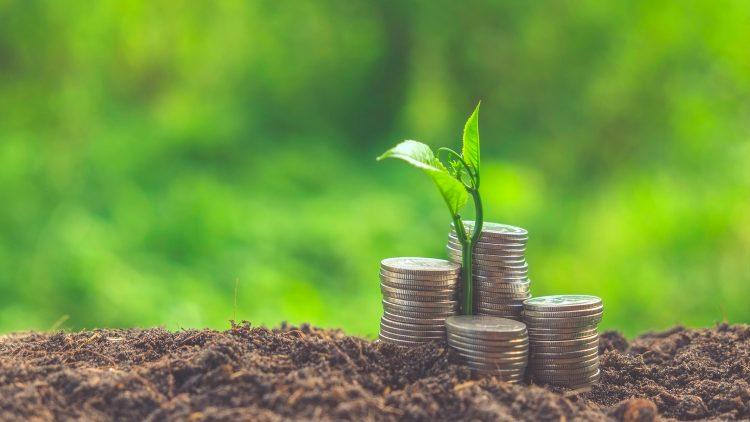 Webinar CERENA 'SDG 8: Decent work and Economic Growth'