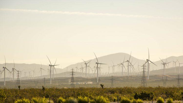 Candidaturas à 6.ª Edição do Programa Cleantech Camp – 2021